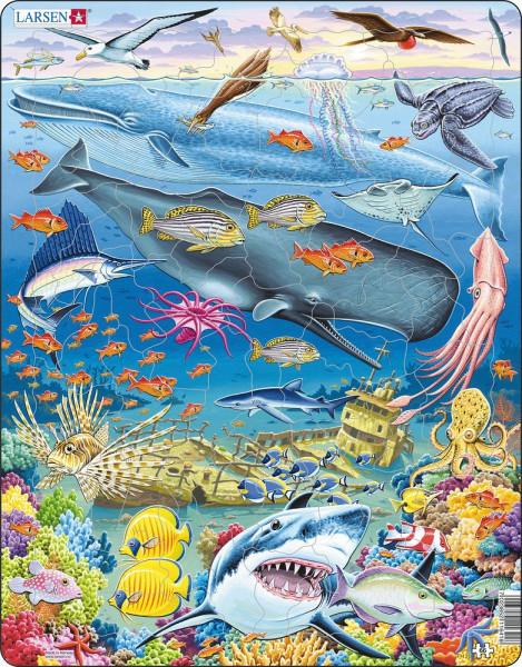 Larsen - Puzzle Wal und Hai