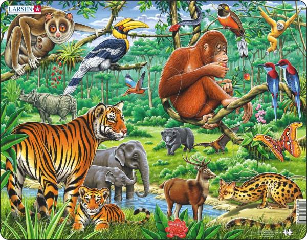 Larsen - Puzzle Dschungel